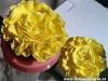 20130906_072501-8x6-amarillas-marca-agua